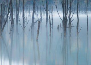 Tablou canvas 50x70 - Lacul Cuejdel