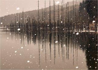 Tablou canvas 50x70 - Lacul Cuejdel iarna