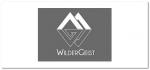 Wildergeist